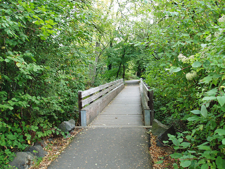 A bridge on the path